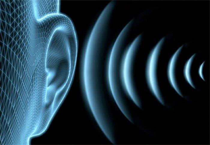 Цікава інформація про слух